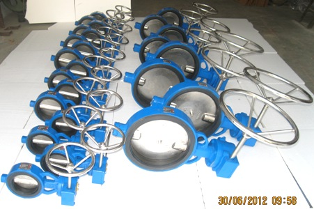 Rubberlined Gear Operated Butterfly Valve Manufacturer Exporter in India