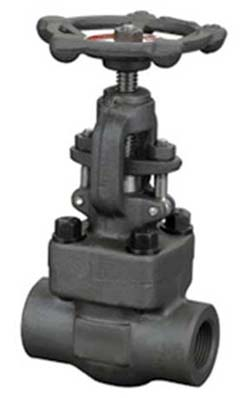Forged Steel Globe Valve Threaded End Welded End Manufactruers Exporters in India
